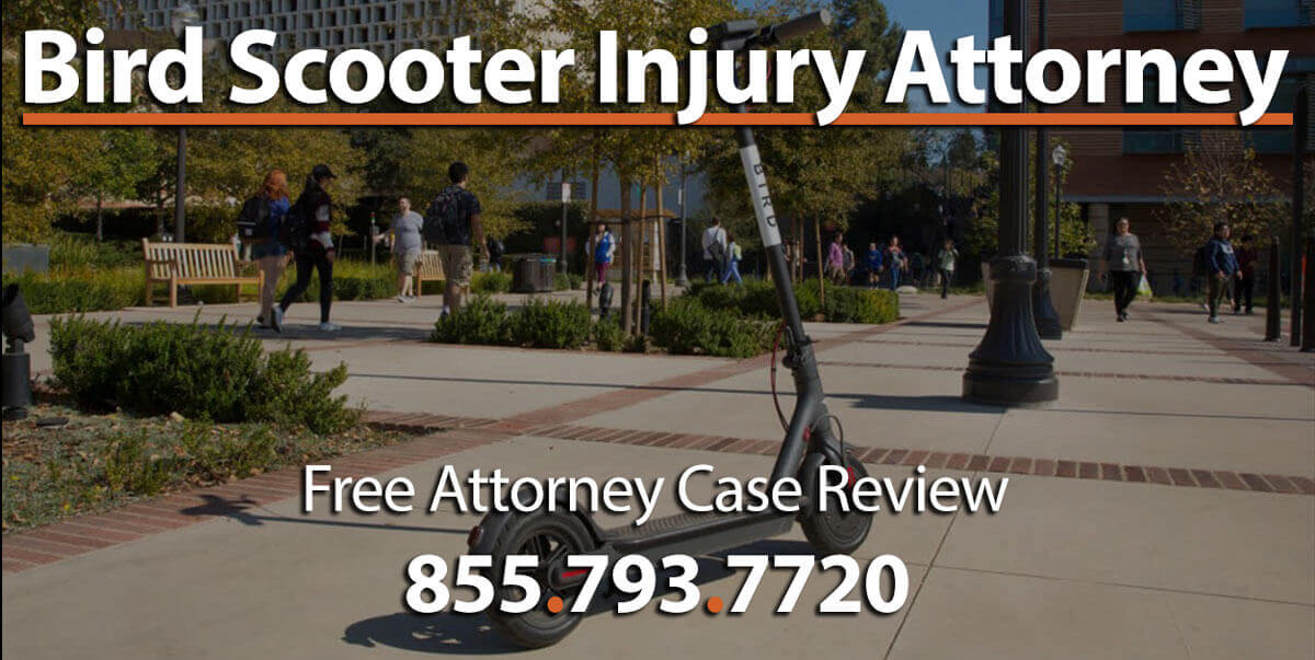 Bird Scooter Personal Injury Lawyer